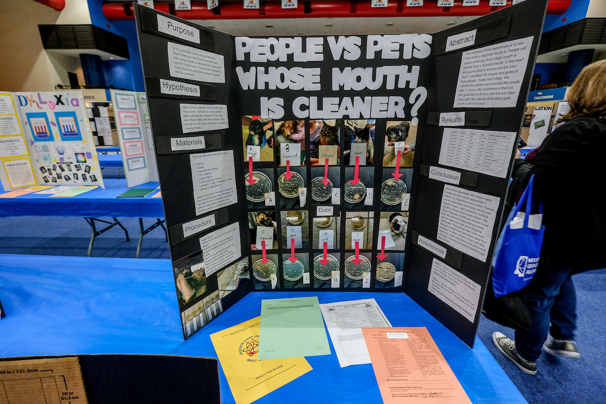 Many people may not have thought about whether mouths of humans are cleaner than pets, but the question was raised as part of an exhibition during the annual Region II Science Fair. A student concludes that it may not be a good idea to allow your pet to lick on your face. (Photo by Charles A. Smith/JSU)
