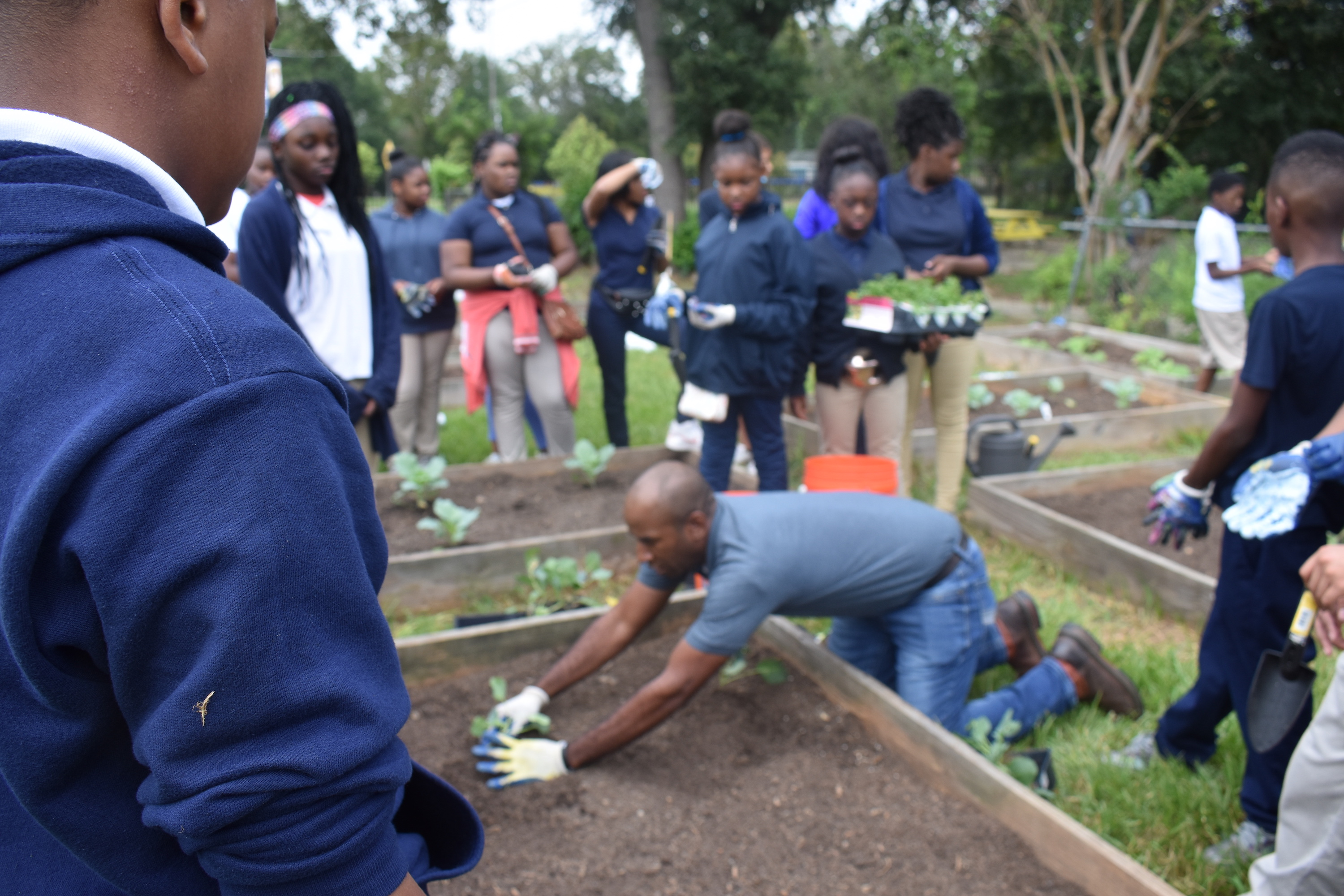 A gardener teaches students the proper way to plant crops.