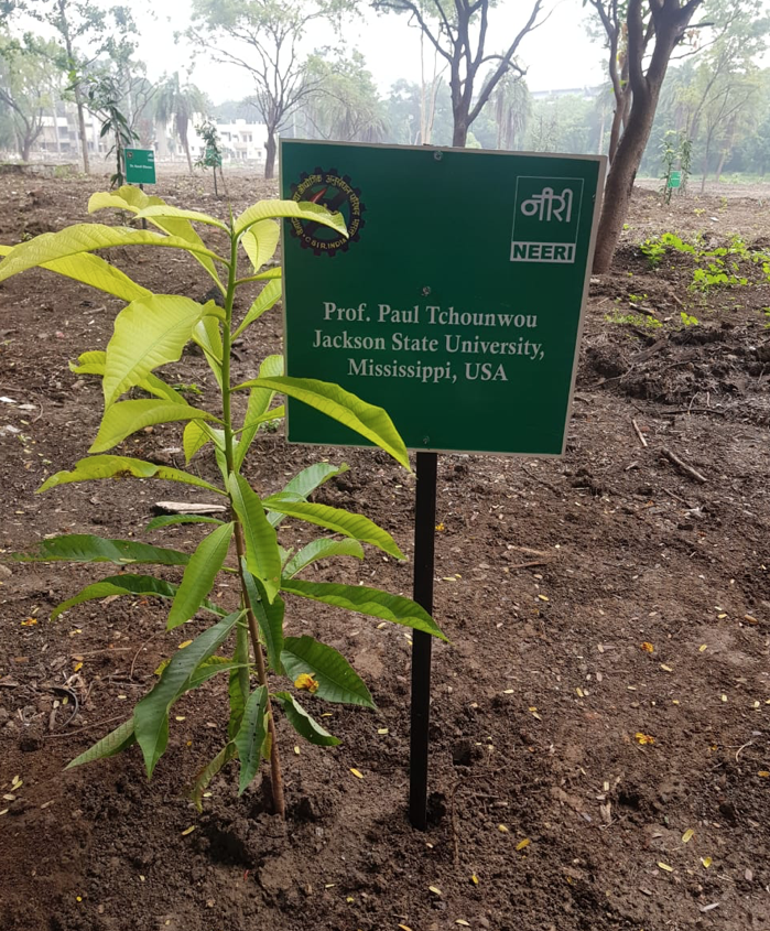 Tchnouwou planted a special tree in the NEERI garden to represent the role of the environment on human health.