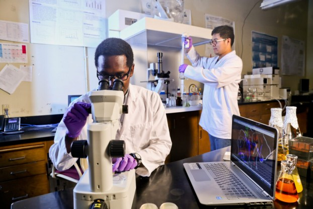 """Engaging Researchers and Innovators for Commercialization at HBCUs"" (EnRICH), is  designed for faculty and student innovators at all HBCUs that are located in the IDeA-eligible states.(Photo by Charles A. Smith/JSU)"